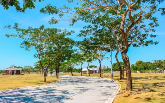 Iloilo Roads and Lawns