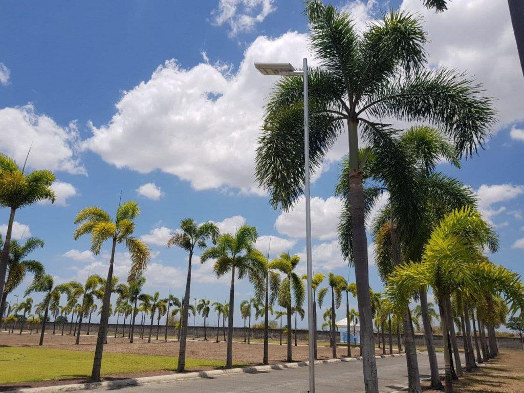 Sustainable Memorial Park